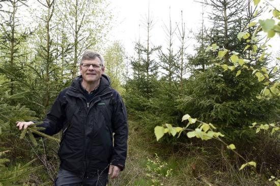 Göran Örlander, ordförande för Södras forskningsstiftelse och skogsstrateg i Södra.