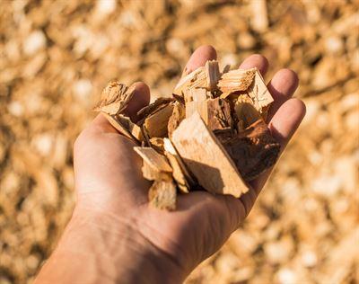Green Bioraff Solutions är ett treårigt projekt där man ur sågspån och fiberslam ska producera nedbrytbar plast.