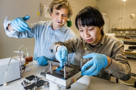 Mikhail Vagin, Penghui Ding, Laboratoriet för organisk elektronik.