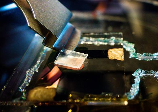 Sensor som mäter värme, ljus och beröring.