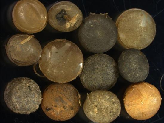 Varje år läcker miljontals pellets ut i miljön från produktionsområdet ut i miljön där djur kan komma att missta pellets för föda.