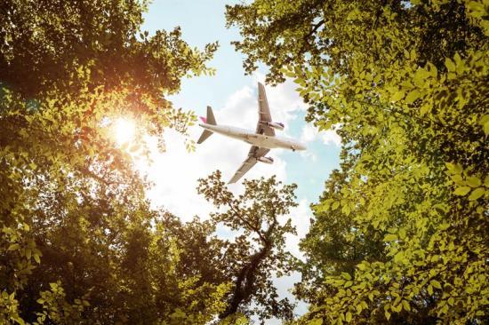 """Förstudieprojektet """"Från flis till flygplan i Småland"""" ska identifiera och utveckla det mest kvalificerade upplägget för en fungerande värdekedja av bioflygbränsleproduktion i Småland."""